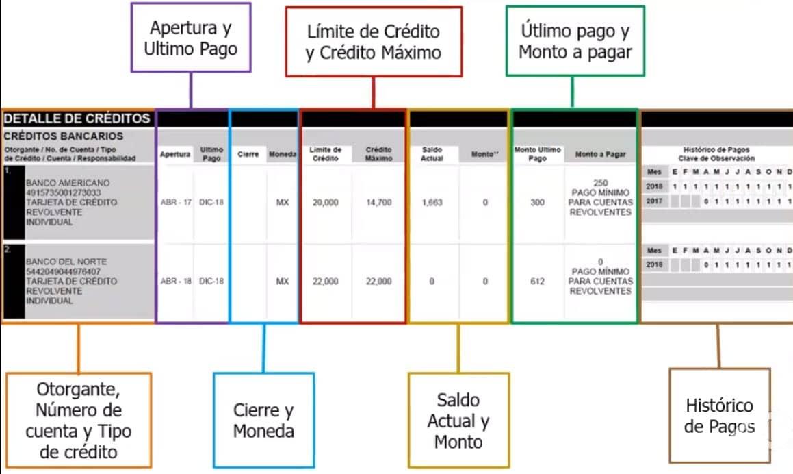 Detalle del credito en el reporte de crédito especial